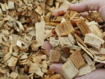 Potencijali i primena biomase