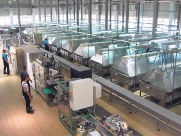 Oglašena prodaja Fabrike akumulatora Sombor - Početna cena 12,5 mil EUR, Amerikanci i Rusi potencijalni kupci