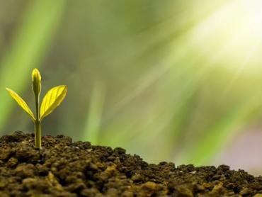 EBRD i UniCredit Leasing podržavaju prelazak malih i srednjih preduzeća u Srbiji na zelenu ekonomiju