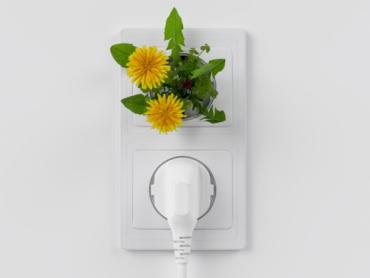 Zeleni poslovi budućnosti – 10 ideja